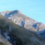 Κυνηγετικό τοπίο | Ιρλανδικά σέττερ στην Ελλάδα