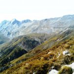 Συλλογή με φωτογραφίες και βίντεο - Κυνηγετικό τοπίο | Ιρλανδικά σέττερ